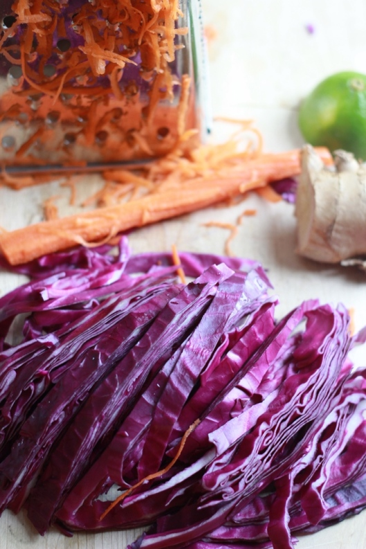 Purple Cabbage and Shredded Carrots