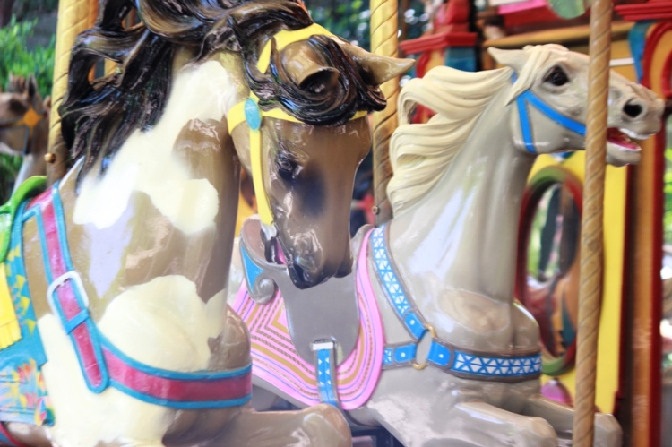 Ft worth zoo Carousel