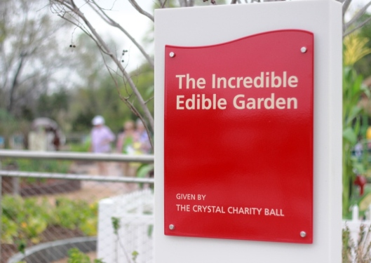 Incredible Edible Garden