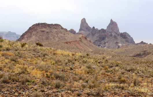Mule Ears Viewpoint