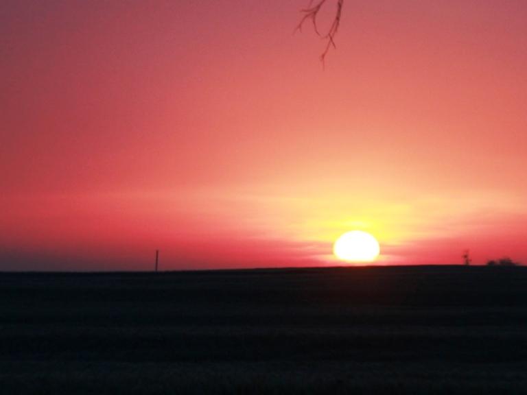 Sunrise over the wheatfield