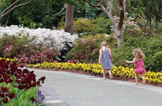 Walking Through a Sea of Blooms
