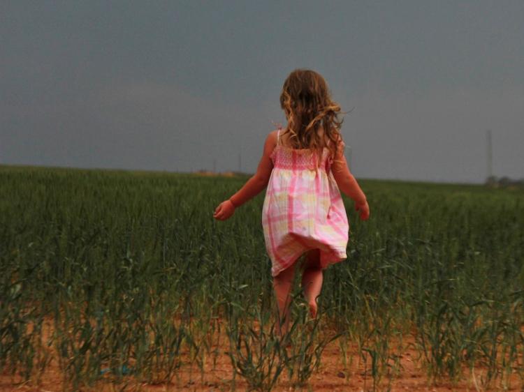 Walking Through the wheatfield before a storm